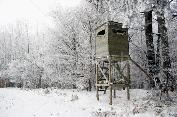 Hunting Tower in Winter Stock photo © tepic