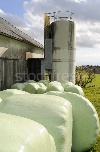 Farm with Silo Stock photo © tepic