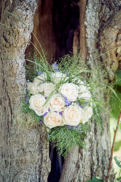 Bridal Bouquet in a Tree Stock photo © tepic