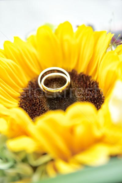 Trouwringen zon bloem twee Geel bloemen Stockfoto © tepic