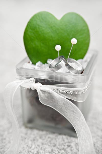 結婚指輪 サボテン 銀 中心 ガラス ストックフォト © tepic