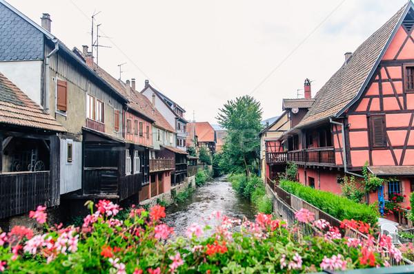表示 伝統的な 住宅 典型的な 花 家 ストックフォト © tepic