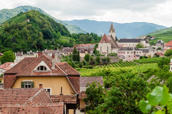 村 オーストリア 空 ツリー ワイン ストックフォト © tepic