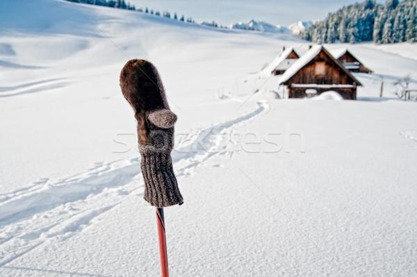 Ski Pol Schnee Haus Gebäude Stock foto © tepic