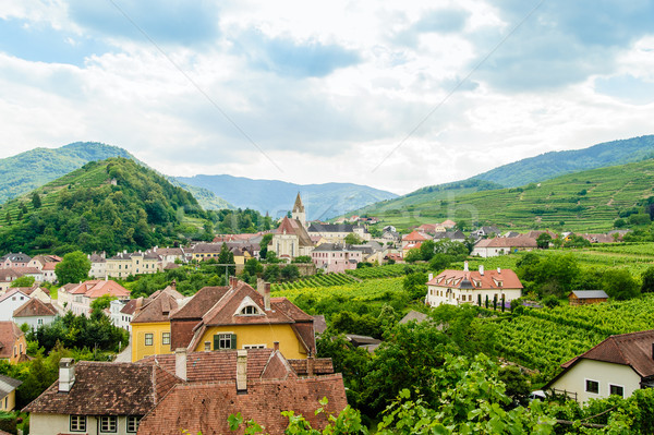 Small Village in Wachau Stock photo © tepic
