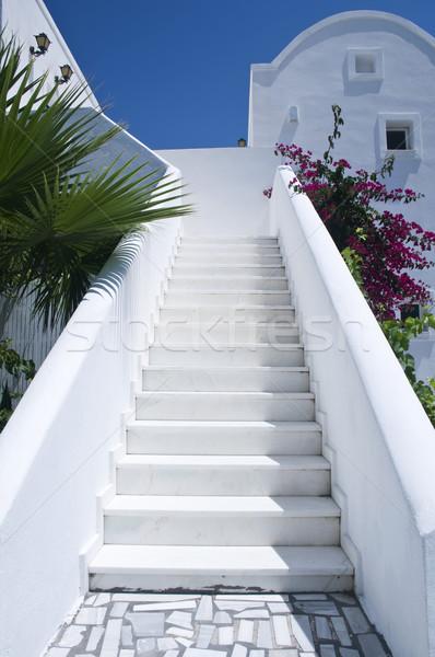 Whitewashed Steps Stock photo © tepic