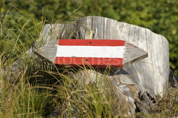 Houten teken wijzend reizen kleur witte Stockfoto © tepic