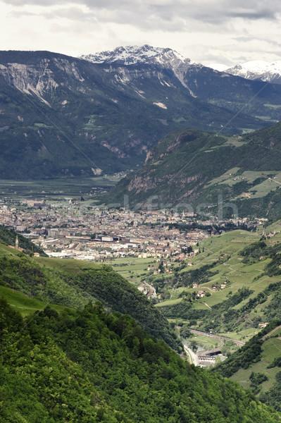 View verticale meridionale città foresta natura Foto d'archivio © tepic