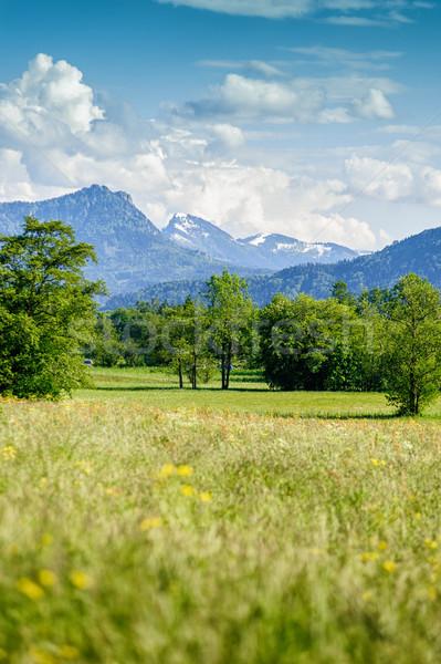 Zomer landschap hemel natuur berg veld Stockfoto © tepic