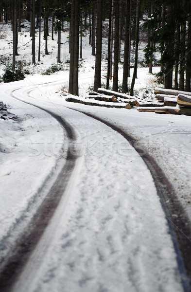 Winding Road in a Winter Forest Stock photo © tepic