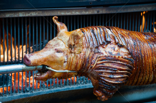 Sucking Pig Stock photo © tepic