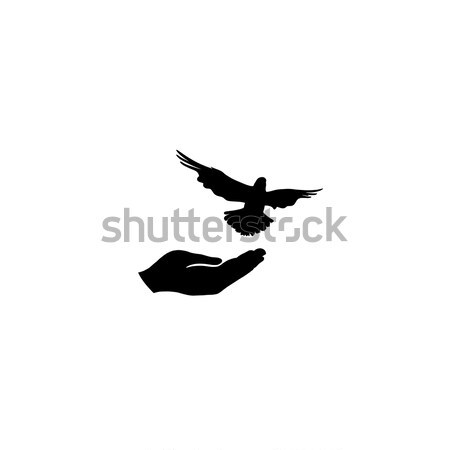 Dove bird free with hand. Pigeon flying. Peace symbol. Freedom Stock photo © Terriana
