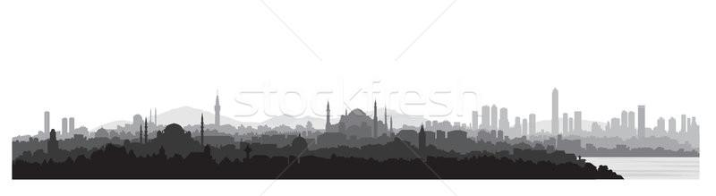 Istanbul viaggio Turchia turco urbana Foto d'archivio © Terriana