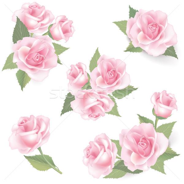 Floral fleur rose bouquet vintage couvrir Photo stock © Terriana
