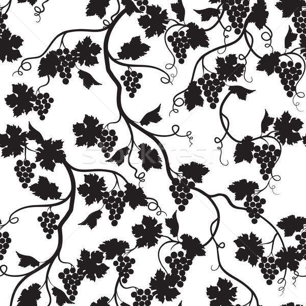 Floral tiled pattern with grape branch silhouette. Wineyard wall Stock photo © Terriana
