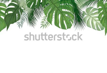 Floral seamless pattern. Tropical Palm tree leaves background Stock photo © Terriana