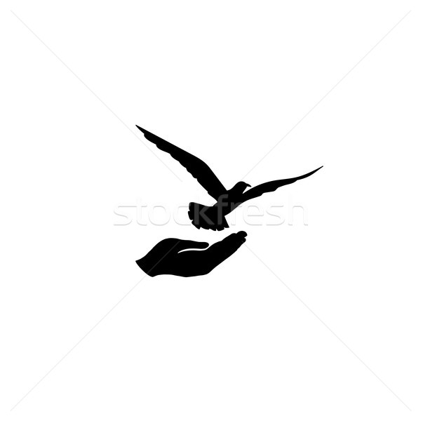 Dove bird free with hand. Pigeon flighing. Peace symbol. Freedom Stock photo © Terriana