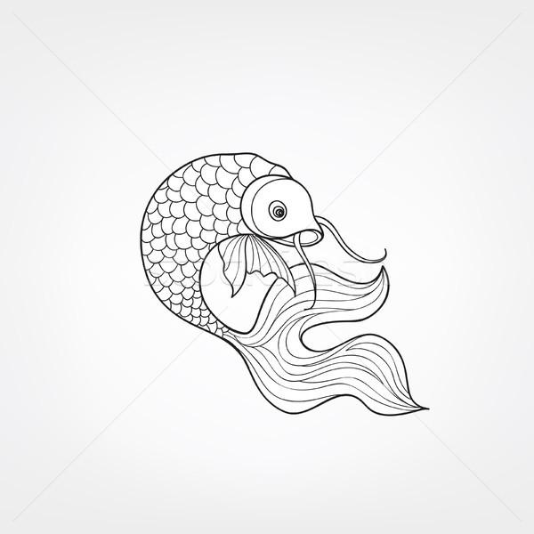 Fish isolated. Hand drawn doodle line decorative marine life bac Stock photo © Terriana