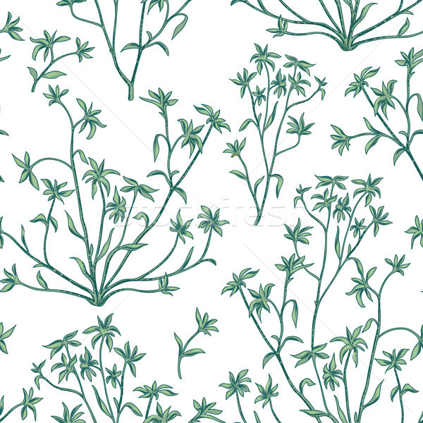 Floral leaves seamless pattern. Wild nature background. Flourish Stock photo © Terriana