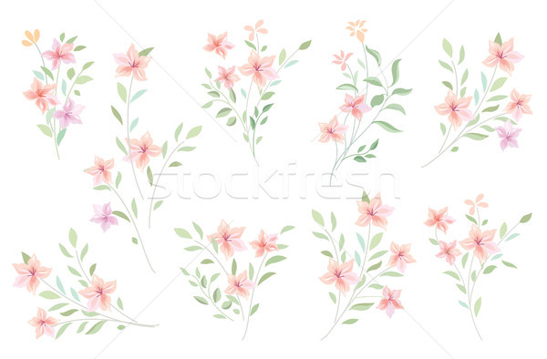 Floral bouquet set. Flowers and leaves garden background Stock photo © Terriana