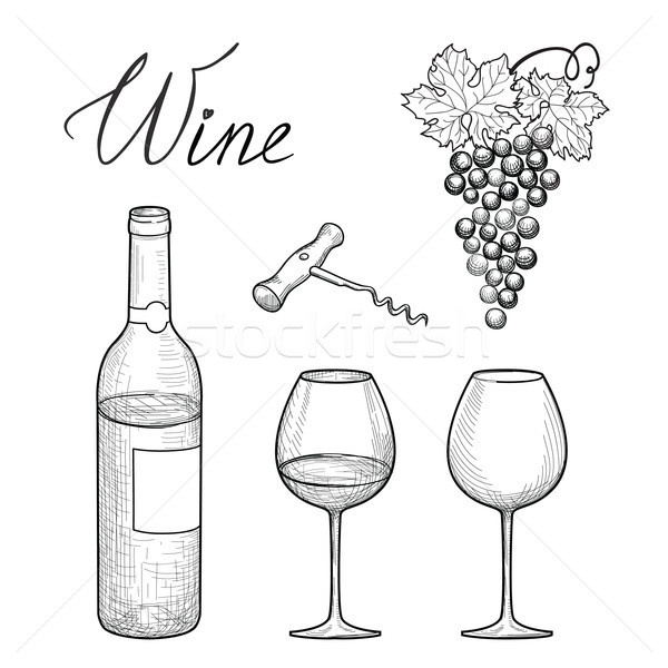 Wine set. Wine glass, bottle, grape, lettering. Vineyard engrave Stock photo © Terriana