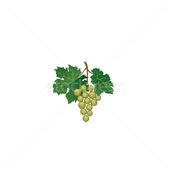 De uva hojas floral vino retro Foto stock © Terriana