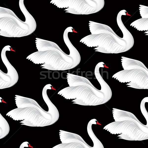 White birds seamless pattern. Wildlife background. Swimming swan Stock photo © Terriana
