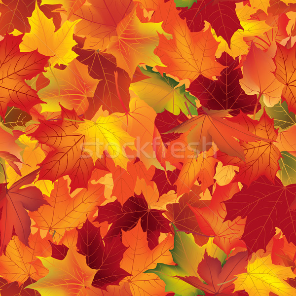 Autumn texture. Floral maple leaves. Fall seamless pattern Stock photo © Terriana