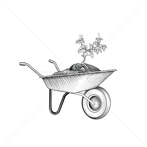 Kert kosár növény talicska kertészkedés felirat Stock fotó © Terriana