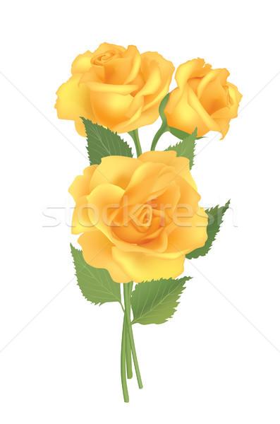 rose-posy-3 Stock photo © Terriana