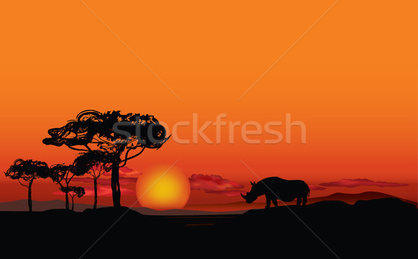 African panorama animale silhouette savana tramonto Foto d'archivio © Terriana