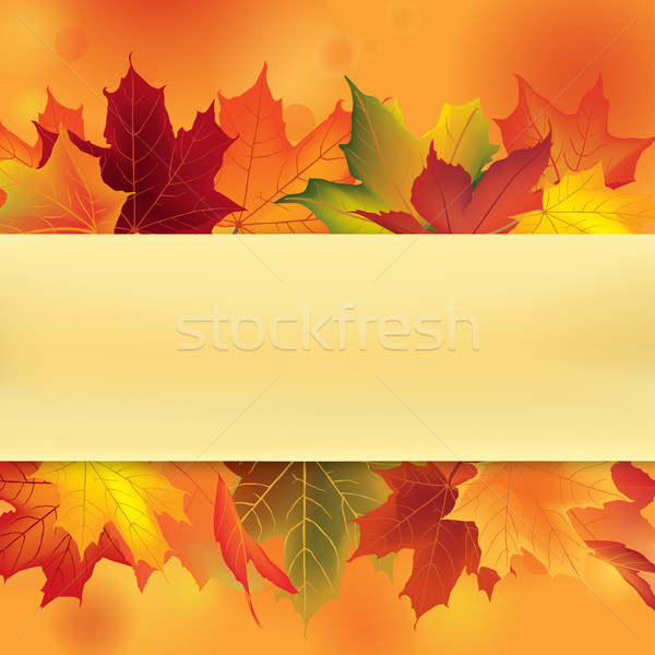Autumn leaves frame. Fall maple leaf floral background Stock photo © Terriana
