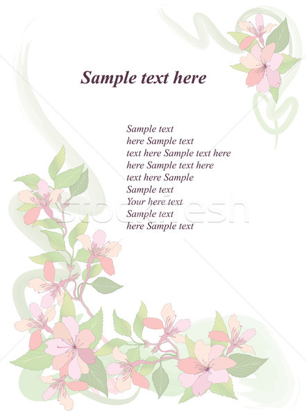 Floral pattern. Flower background. Spring flourish card. Stock photo © Terriana