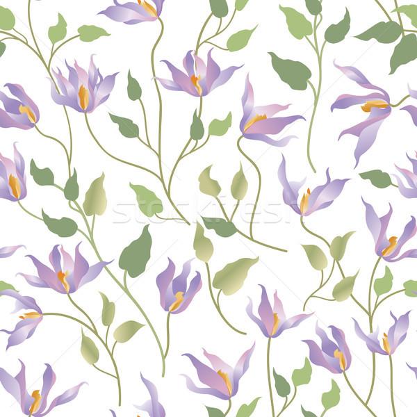 Floral blanche jardin de fleurs printemps Photo stock © Terriana