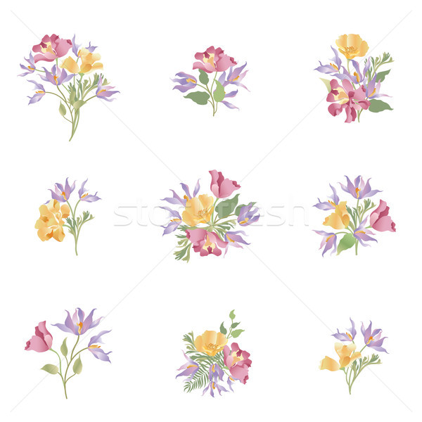Flower bouquet set. Floral frame design. Flourish greeting card. Stock photo © Terriana