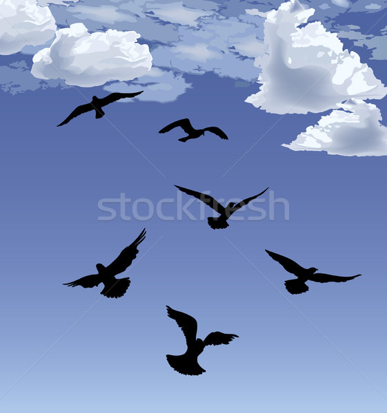 Flock of bird flying Blue sky background. Animal wildlife Stock photo © Terriana