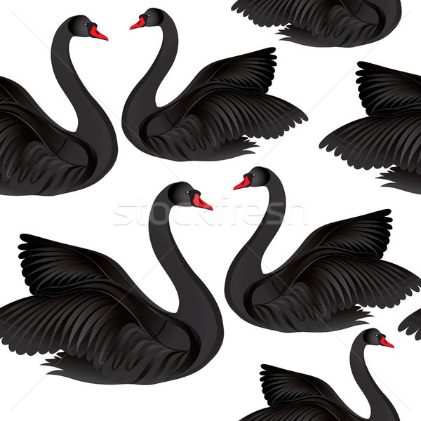 Zwarte vogel wildlife zwemmen teken Stockfoto © Terriana