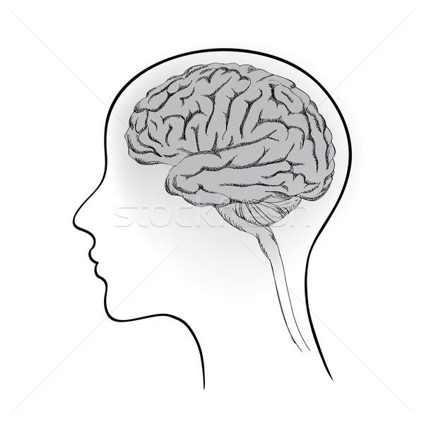Kadın beyin kafa imzalamak düşünmek ikon Stok fotoğraf © Terriana