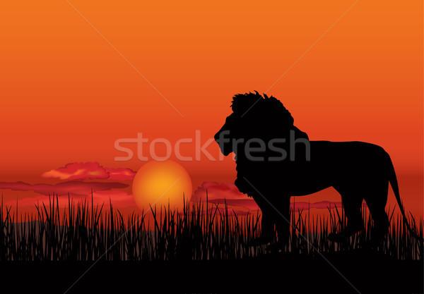 アフリカ 風景 動物 サバンナ 自然 日没 ストックフォト © Terriana