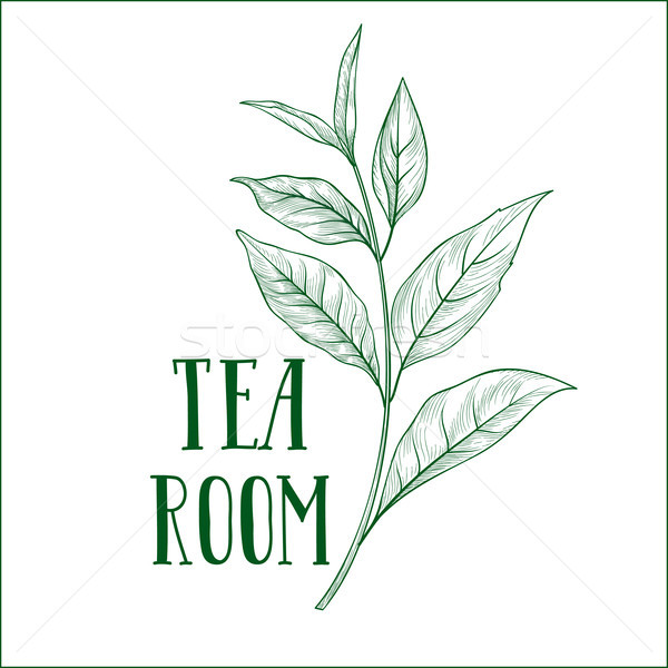 Green tea tree branch herb label with leaves and lettering TEA ROOM. Stock photo © Terriana