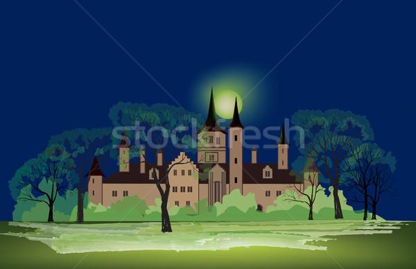 Oude huis nacht park landschap oude kasteel Stockfoto © Terriana