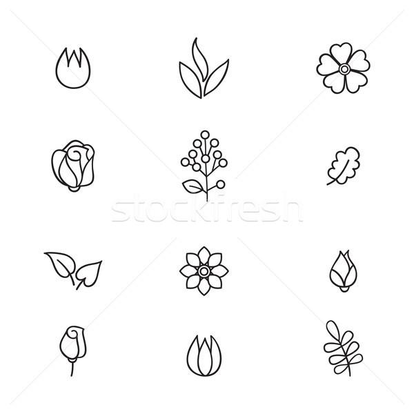 Stock fotó: Virágmintás · ikon · gyűjtemény · virágok · levelek · vonal · művészet