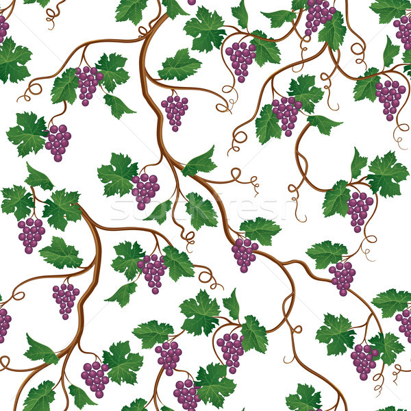 Floral pattern with grape branch. Wineyard seamless wallpaper. G Stock photo © Terriana