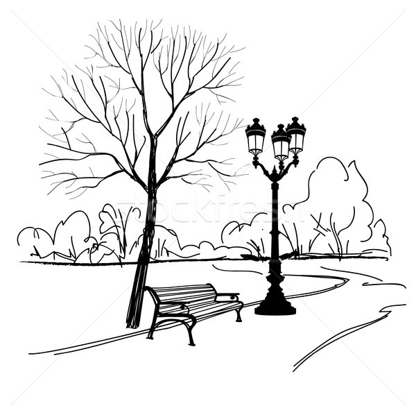 Bench in park with tree and streetlamp. City park landscape Stock photo © Terriana