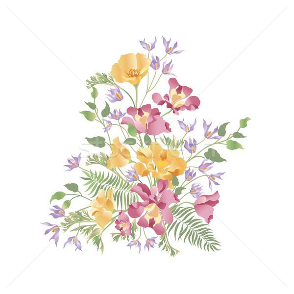 Floral quadro florescer cartão verão Foto stock © Terriana