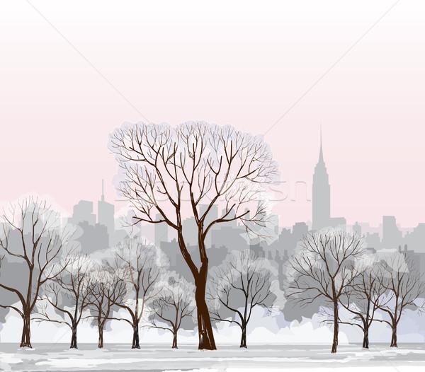 クリスマス 冬 景観 雪 ニューヨーク市 公園 ストックフォト © Terriana