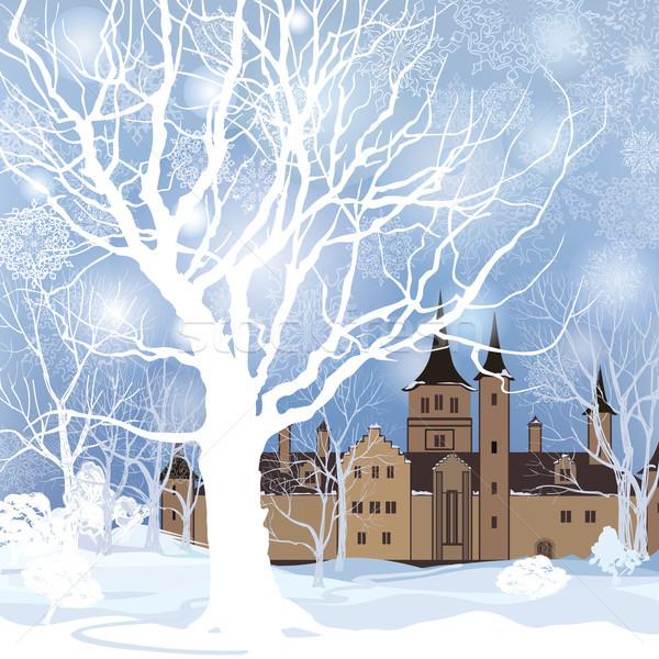 Tél tájkép hó erdő kastély épület Stock fotó © Terriana