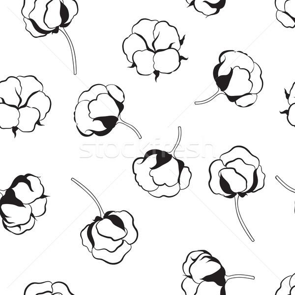 フローラル 花 綿 自然 ボール ストックフォト © Terriana