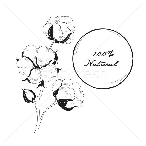 Pamuk ikon doğal malzeme imzalamak çiçek Stok fotoğraf © Terriana