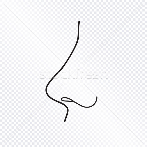 Nose isolated. Human nose icon. Stock photo © Terriana